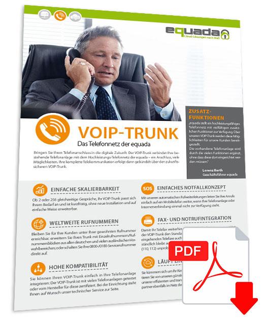 Flyer-voiptrunk-pdf